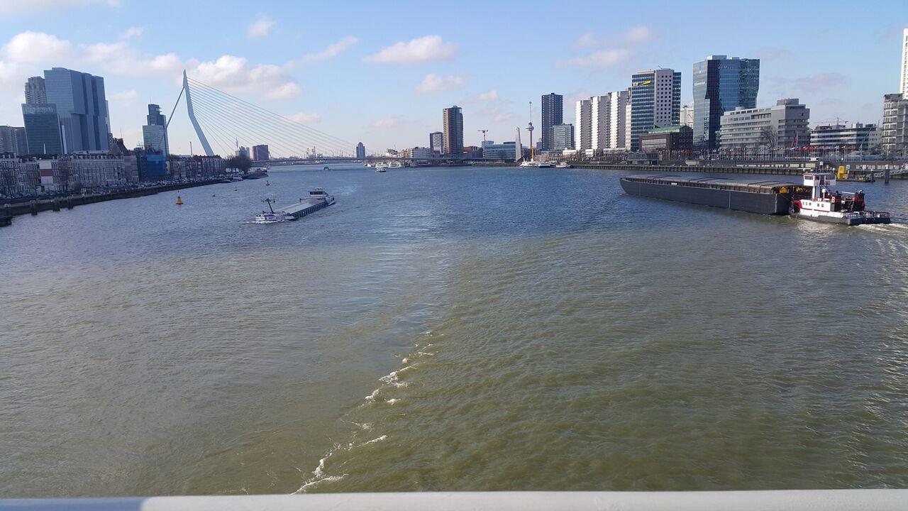 Erasmus Bridge_preview
