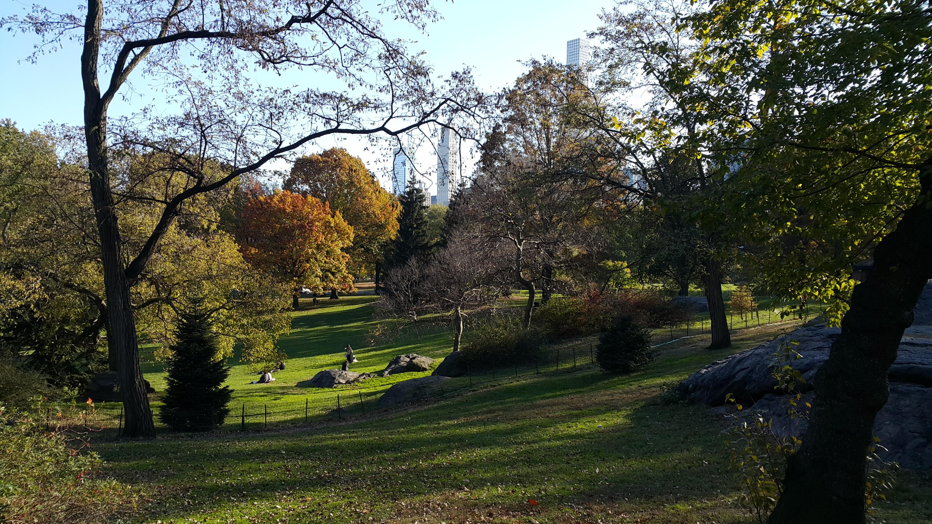 Autumn in New York.jpg